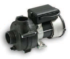 Main hot tub pump Waterway Executive Canada